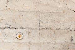 Сбор винограда или grungy белая предпосылка естественного цемента или каменной старой текстуры как ретро стена картины Стоковые Фотографии RF