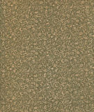 сбор винограда картины античного форзаца флористический бумажный Стоковое Фото
