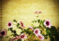 сбор винограда карточки флористический Стоковое Изображение RF