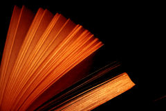 сбор винограда книги открытый Стоковые Изображения RF