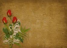 сбор винограда красного цвета праздника карточки розовый Стоковые Изображения RF