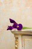 сбор винограда мебели предпосылки красивейший деревянный Стоковая Фотография