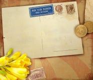 сбор винограда открытки предпосылки Стоковая Фотография