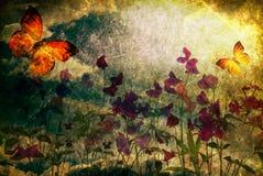 сбор винограда открытки Стоковые Фотографии RF