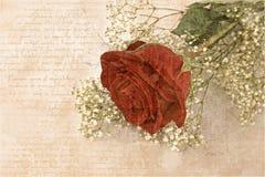 сбор винограда открытки бесплатная иллюстрация