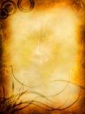 сбор винограда первоклассных картин предпосылки затрапезный Стоковое Фото