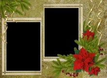 сбор винограда праздника карточки ветвей Стоковое Фото