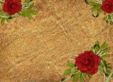 сбор винограда праздника карточки розовый Стоковое Изображение RF