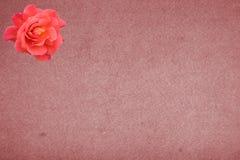 сбор винограда предпосылки розовый иллюстрация вектора