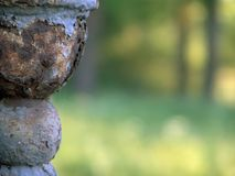 сбор винограда предпосылки старый Стоковые Изображения