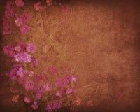 сбор винограда предпосылки Стоковое Фото