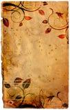 сбор винограда предпосылки Стоковое фото RF