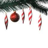 сбор винограда рождества ветви шариков Стоковая Фотография