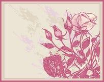 сбор винограда роз карточки Бесплатная Иллюстрация