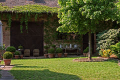 сбор винограда сада Стоковая Фотография RF