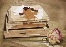 сбор винограда стога розы книг Стоковые Фото