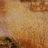 сбор винограда текстуры grunge предпосылки Стоковое Фото