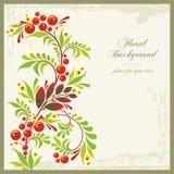 сбор винограда типа предпосылки флористический орнаментальный иллюстрация штока