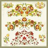 сбор винограда флористических орнаментов бесплатная иллюстрация