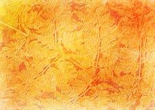 сбор винограда флористического изображения папоротника стилизованный Стоковые Фото