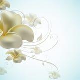сбор винограда цветка принципиальной схемы eps10 Стоковая Фотография