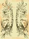 сбор винограда эмблемы Стоковые Фото