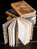 сбор винограда 2 книг Стоковые Фото