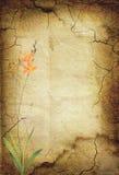 сбор винограда 28 цветков предпосылки Стоковое фото RF