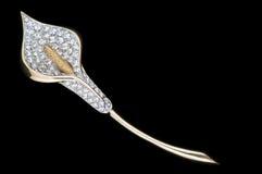 сбор винограда brooch lilly sparkly Стоковые Изображения RF