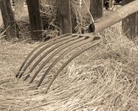 сбор винограда pitchfork Стоковое Изображение RF