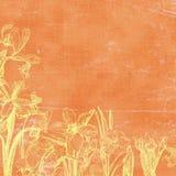 сбор винограда ботанических florals предпосылки бумажный Стоковая Фотография