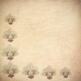 сбор винограда бумаги орнамента предпосылки геометрический старый Стоковое Изображение