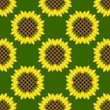 сбор винограда бумаги орнамента предпосылки геометрический старый Картина солнцецветов безшовная Стоковое фото RF