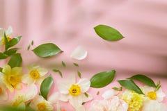 сбор винограда вектора иллюстрации рамки цветков Стоковые Изображения RF