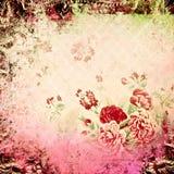 сбор винограда весны предпосылки флористический Стоковое Изображение RF