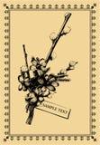 сбор винограда открытки Стоковое Фото