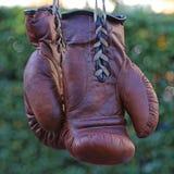 сбор винограда перчаток бокса Стоковая Фотография