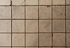 сбор винограда плитки текстуры картины безшовный Стоковая Фотография RF