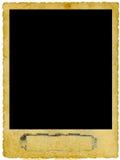 сбор винограда фото рамки Стоковое Изображение
