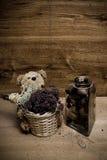 сбор винограда i Стоковое Фото