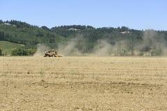 Сбор выросли Орегоном, который Rye травы в долине Willamette, Marion County Стоковое Фото