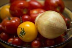 Сбор лета томатов и лука Стоковые Изображения RF