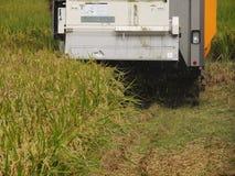 Сбор жатки зернокомбайна Стоковое Изображение RF