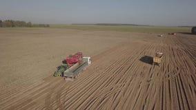 Сбор картошек с зернокомбайном сток-видео