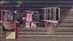 Сбор картошек с зернокомбайном акции видеоматериалы