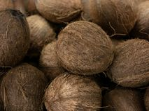 Сбор кокоса много кокосов кокос для текстур еды Ландшафт Фон кокоса Рынок овоща улицы Стоковые Изображения
