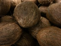 Сбор кокоса много кокосов кокос для текстур еды Ландшафт Фон кокоса Рынок овоща улицы Стоковые Фотографии RF