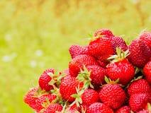 Сбор клубники Серии красных ягод Запачканная зеленая и желтая предпосылка Стоковые Фото