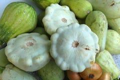 Сбор овощей: тыквы куста, vegetable сердцевины, луки Стоковые Изображения