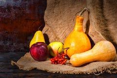 Сбор осени красных яблок, груши, рябины и тыкв лежа дальше Стоковые Изображения RF